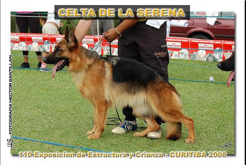 Celta de La Serena
